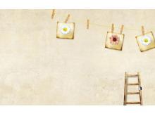 棕色背景墙古典PPT背景图片