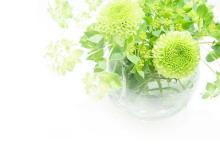 绿色花瓶植物PPT背景图片