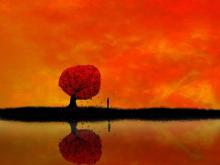 红色卡通自然PPT背景图片