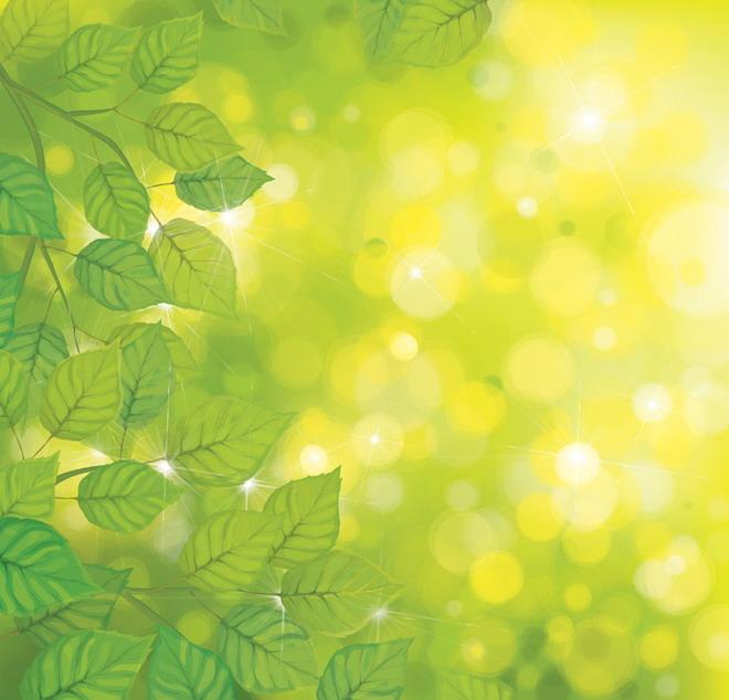 这是一张清新叶子光晕PPT背景图片,第一PPT模板网提供幻灯片背景图片免费下载; PPT背景图片用黄绿色作为PPT背景,阳光被层层叠叠的树叶过滤,投射着明亮的光,黄色的白色的的圆圆的光晕温暖了整张画面…… 关键词:黄色PPT背景,绿色背景图片,叶子、光晕PPT背景图片,植物幻灯片背景图片下载,.