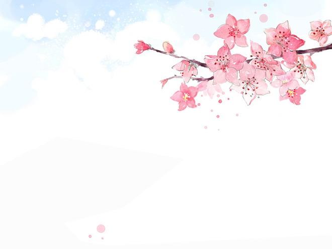 cherry blossom tree wallpaper for walls