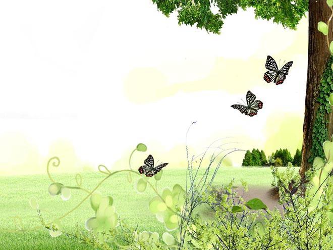 这是一张草坪大树蝴蝶花卉自然PPT背景图片,第一PPT模板网提供幻