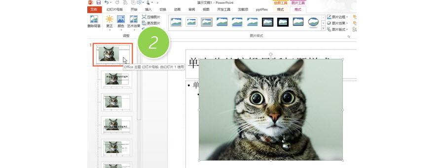 PPT制作技巧:如何将图片应用所有的PPT页面?