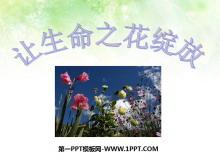 《�生命之花�`放》珍�凵�命PPT�n件5