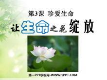 《�生命之花�`放》珍�凵�命PPT�n件4