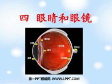 《眼睛和眼镜》透镜及其应用PPT课件2