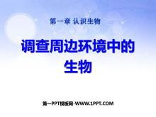 《调查周边环境中的生物》认识生物PPT课件5