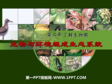 《生物与环境组成生态系统》了解生物圈PPT课件3