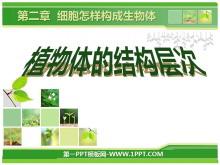 《植物体的结构层次》细胞怎样构成生物体PPT课件4