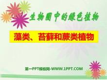 《藻类苔藓和蕨类植物》生物圈中有哪些绿色植物PPT课件5