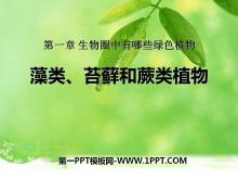 《藻类苔藓和蕨类植物》生物圈中有哪些绿色植物PPT课件6