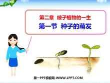 《种子的萌发》被子植物的一生PPT课件