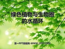 《绿色植物与生物圈的水循环》PPT课件4