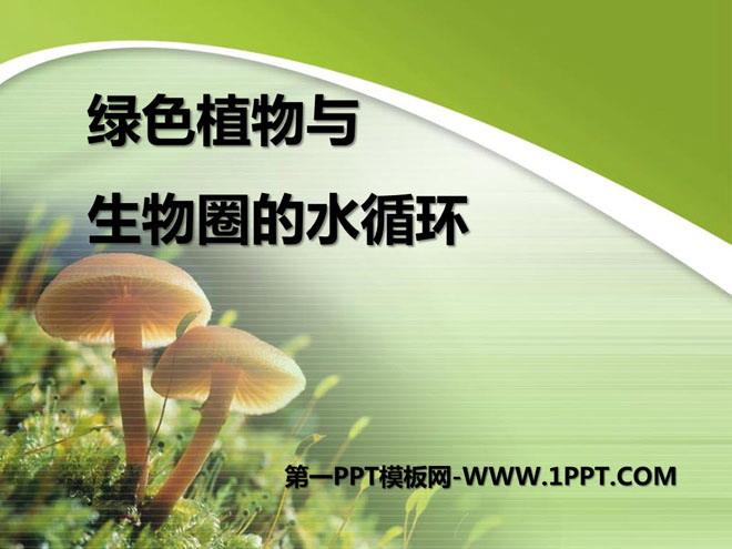 《绿色植物与生物圈的水循环》PPT课件