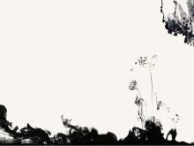 黑色水墨莲花中国风PPT背景图片