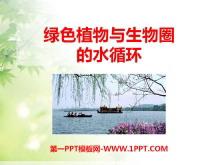 《绿色植物与生物圈的水循环》PPT课件6