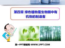 《绿色植物是生物圈中有机物的制造者》PPT课件