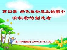 《绿色植物是生物圈中有机物的制造者》PPT课件4