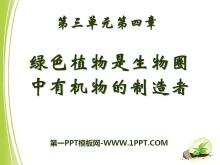 《绿色植物是生物圈中有机物的制造者》PPT课件7