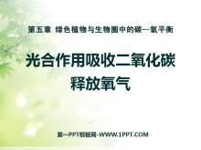 《光合作用吸收二氧化碳释放氧气》绿色植物与生物圈中碳-氧平衡PPT课件6