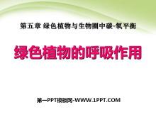 《�G色植物的呼吸作用》�G色植物�c生物圈中碳-氧平衡PPT�n件5