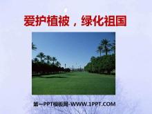 《�圩o植被,�G化祖��》PPT�n件4