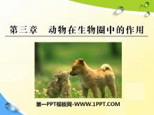 《动物在生物圈中的作用》PPT课件5