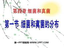 《细菌和真菌的分布》细菌和真菌PPT课件2