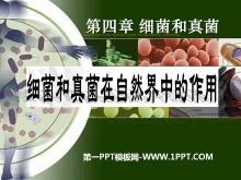 《细菌和真菌在自然界中的作用》细菌和真菌PPT课件