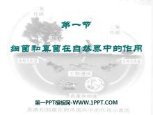 《细菌和真菌在自然界中的作用》细菌和真菌PPT课件3