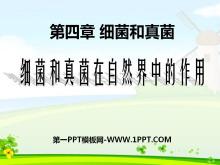 《细菌和真菌在自然界中的作用》细菌和真菌PPT课件4