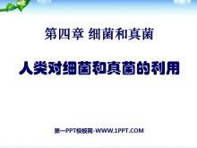 《人类对细菌和真菌的利用》细菌和真菌PPT课件2