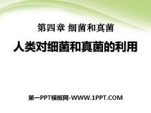 《人类对细菌和真菌的利用》细菌和真菌PPT课件5