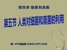 《人类对细菌和真菌的利用》细菌和真菌PPT课件7