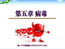 《病毒》PPT课件2