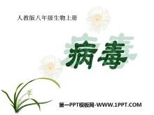 《病毒》PPT课件7