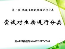 《尝试对生物进行分类》根据生物的特征进行分类PPT课件2
