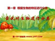 《尝试对生物进行分类》根据生物的特征进行分类PPT课件5
