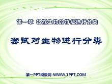 《尝试对生物进行分类》根据生物的特征进行分类PPT课件6