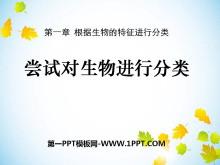 《尝试对生物进行分类》根据生物的特征进行分类PPT课件7