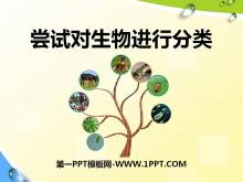 《尝试对生物进行分类》根据生物的特征进行分类PPT课件8
