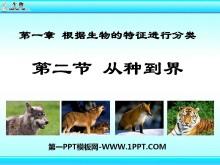 《从种到界》根据生物的特征进行分类PPT课件