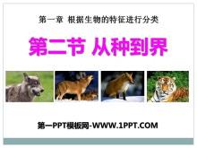 《从种到界》根据生物的特征进行分类PPT课件2