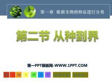 《从种到界》根据生物的特征进行分类PPT课件7