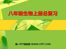 《八年级生物上册总复习》PPT课件