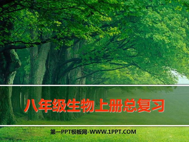 《八年级生物上册总复习》PPT课件4