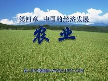 《农业》中国的经济发展PPT课件4