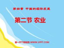 《农业》中国的经济发展PPT课件7