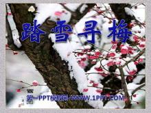 《踏雪寻梅》PPT课件4