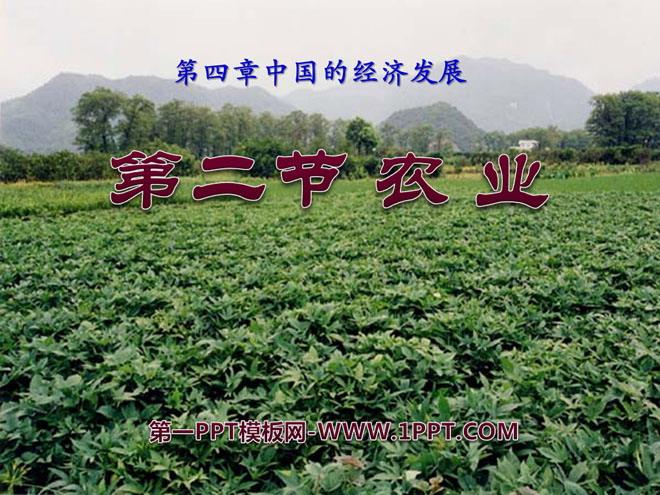 《农业》中国的经济发展PPT课件6